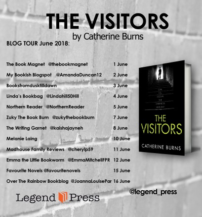 the visitors PB Blog Tour Banner jpeg