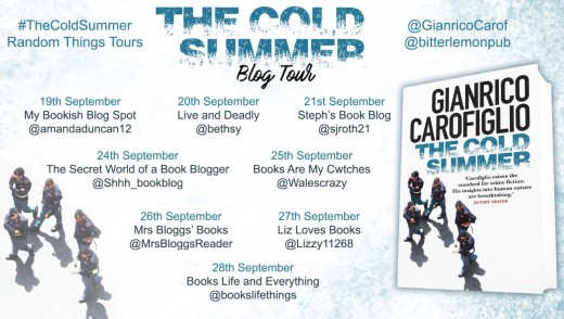 The Cold Summer Blog Tour Poster (1)