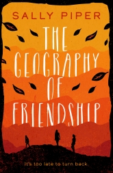 geography of friendship high res